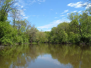 300px-Des_Plaines_River_Lake_County_Illinois