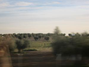 Andalucia_photo